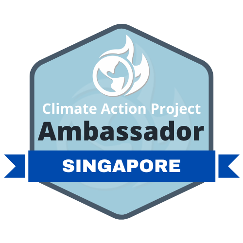 climate action project singapore